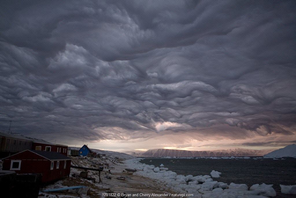 Dramatic 'Undulatus asperatus' cloud formation as a storm builds at dawn over Qaanaaq, Inglefield Bay. Northwest Greenland, September 2008. This cloud formation was first proposed as a new type of cloud in 2009, and if formally recognized will be the first cloud formation named in 60 years.