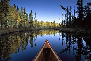 Canoe bow with autumn trees, Discovery Lake, Superior National Forest, Minnesota  -  Jim Brandenburg