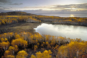 Raven Lake surrounded by autumn colored forest, Minnesota - Jim Brandenburg
