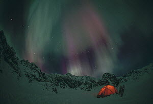 Illuminated tent beneath snow-covered mountains and Aurora borealis, Alaska - Michio Hoshino