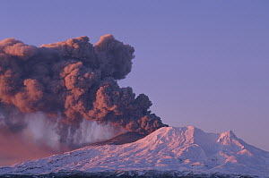 Mt Ruapehu eruption 1996, highest volcano on North Island, Ohakune, Tongariro National Park, New Zealand  -  Tui De Roy
