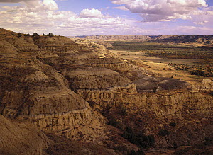 Badlands in Theodore Roosevelt National Park, North Dakota  -  Tim Fitzharris