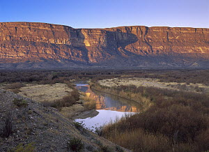 Rio Grande and limestone cliffs of the Sierra Ponce, also known as Mesa de Anguilla, Big Bend National Park, Texas  -  Tim Fitzharris