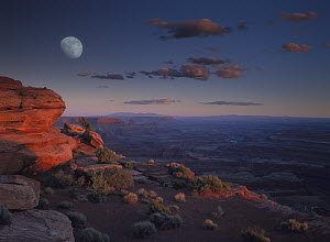 Moon over Canyonlands National Park from Green River Overlook, Utah - Tim Fitzharris