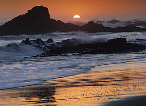 Crashing surf on rocks at sunset, Point Piedras Blancas, California  -  Tim Fitzharris