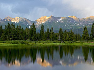 West Needle Mountains reflected in Molas Lake, Weminuche Wilderness, Colorado  -  Tim Fitzharris