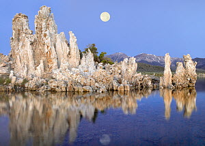 Full moon over Mono Lake with wind and rain eroded tufa towers and the eastern Sierra Nevada Mountains in the background, California  -  Tim Fitzharris