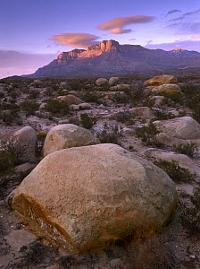 Boulder field and El Capitan, Guadalupe Mountains National Park, Texas  -  Tim Fitzharris
