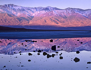 Panamint Range reflected in standing water at Badwater, Death Valley National Park, California  -  Tim Fitzharris