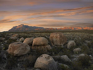 Boulders at Guadalupe Mountains National Park, Texas  -  Tim Fitzharris