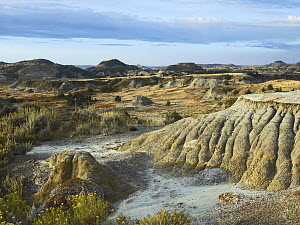 Badlands, South Unit, Theodore Roosevelt National Park, North Dakota  -  Tim Fitzharris