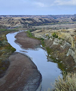 Little Missouri River winding through Wind Canyon, Theodore Roosevelt National Park, North Dakota  -  Tim Fitzharris