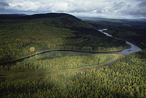 Pechora River valley hills covered with virgin forest, Pechora-Ilych Biosphere Reserve, Ural Mountains, Russia - Konrad Wothe