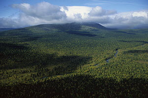 Koip Mountain covered with pristine boreal forest, Ural Mountains, Pechora-Ilych Reserve, Russia - Konrad Wothe