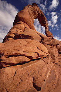 Upward view of Delicate Arch, Arches National Park, Utah - Gerry Ellis