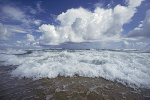Cloudy skies over crashing waves, Bathsheba Beach, windward coast of Barbados, Caribbean  -  Gerry Ellis