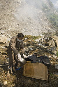 Giant Panda (Ailuropoda melanoleuca) recovery effort, worker disinfecting Mao Mao's coffin after the May 12, 2008 earthquake and landslides, CCRCGP, Wolong, China  -  Katherine Feng