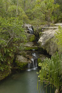 Waterfall and freshwater pools, Isalo National Park, Madagascar - Pete Oxford
