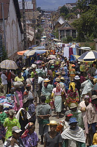 Betsileo village market in Ambohimahasoa showing locals shopping, south central Madagascar - Pete Oxford