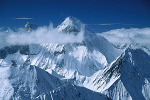 Mustagh Tower, center, and Masherbrum (K1) seen from Chongtar, Karakoram, Xinjiang, China  -  Colin Monteath