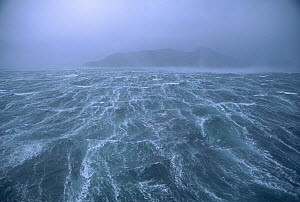 Storm with 80 knot winds in Drake Passage in the Southern Ocean off of Cape Horn, Chile  -  Colin Monteath