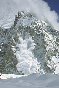 Powder snow avalanche falling from Gasherbrum, Baltoro Glacier, Karakoram Mountains, Pakistan  -  Colin Monteath