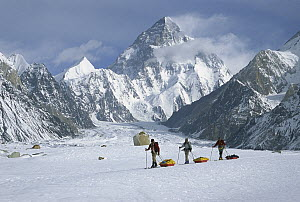 Three skiers pull sleds on Baltoro Glacier with K2 behind, at 8,611 metes elevation it is the second highest peak in the world, Karakoram Mountains, Pakistan  -  Colin Monteath