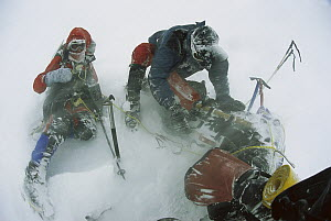 Climbers in severe blizzard attempting to cross Ernest Shackleton's route, South Georgia Island  -  Colin Monteath