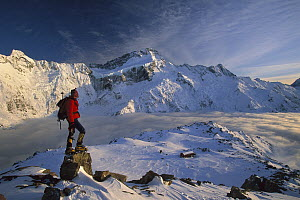 Mt Sefton, climber at dawn above Mueller hut and cloud-filled Mueller Glacier, Mt Cook National Park, New Zealand - Colin Monteath
