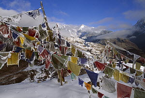 Iced up prayer flags, Dzong Ri, 8595 meters, Kangchenjunga, most easterly of the world's fourteen 8000 metre peaks, Sikkim Himalaya, India  -  Colin Monteath