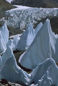 Ice towers on East Rongbuk Glacier, Mount Everest, Tibet  -  Nick Groves