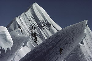 Mountaineer soloing the summit of Mount Cook, New Zealand  -  Nick Groves