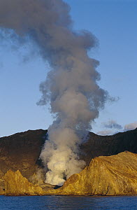 Active volcanic vent on White Island, Bay of Plenty, New Zealand  -  Ingrid Visser