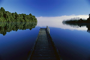 Wood dock reaching out into Lake Mapourika, West Coast, South Island, New Zealand  -  Andy Reisinger