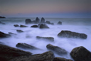 Boulders and seastacks in evening light, Bay of Plenty, New Zealand  -  Andy Reisinger
