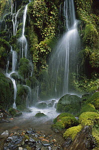Waterfall cascading over mossy rocks, Tongariro National Park, New Zealand  -  Jim Harding