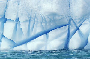 Crevasses created by the melting of the ice, Antarctica  -  Jan Vermeer