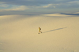 Man hiker wearing shorts, a hat and a backpack, 52, walking alone in a big sprawling landscape of sand and distant mountains, across white sand dunes, evening, autumn, White Sands National Monument, N... - Yva Momatiuk & John Eastcott