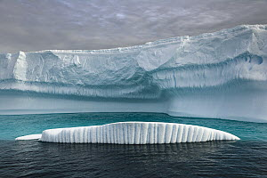 Icebergs carved by waves and melting of the ice, Grandidier Passage, western Antarctica  -  Yva Momatiuk & John Eastcott