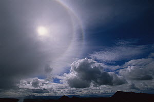 Sun halo, caused by ice crystals in high clouds, Iceland - Kevin Schafer
