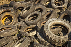 Abandoned car tires in junkyard, Christchurch, New Zealand - Colin Monteath