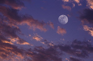 Clouds and full moon, Spain - Albert Lleal