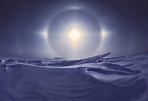Sundogs, also known as mock sun, with snow field, Minnesota - Jim Brandenburg