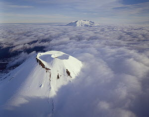 Mount Ngauruhoe and Mount Ruapehu, Tongariro National Park, New Zealand  -  Rob Brown