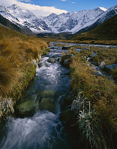 Cameron River and Arrowsmith Range, central Southern Alps, New Zealand  -  Rob Brown