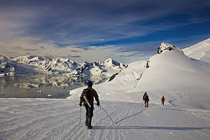 Climbers roped for glacier travel in case of crevasses, Mount Don Roberts, Lemaire Island, Paradise Bay behind, Antarctic Peninsula, Antarctica  -  Colin Monteath