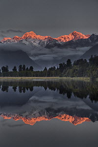 Sunset reflection of Lake Matheson with Mount Tasman and Mount Cook, Westland National Park, New Zealand - Colin Monteath