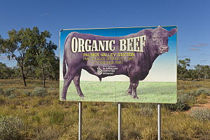 Highway billboard advertising organic beef ranch, Northern Territory, Australia  -  Yva Momatiuk & John Eastcott