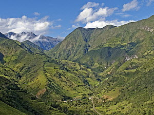 Valley and mountains in Verdecocha Ecological Reserve, western slope of Andes, Ecuador  -  Michael & Patricia Fogden
