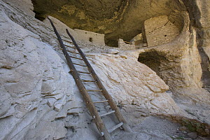 Native American ruins, Gila Cliff Dwellings National Monument, New Mexico - Tom Vezo